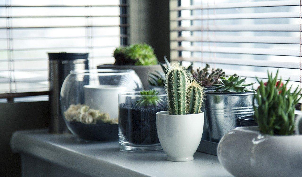 Aprende a decorar tu casa por muy poco dinero