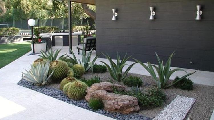 ¿Qué plantas poner en el jardín o terraza?